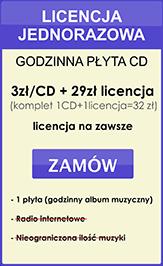 licencja jednorazowa